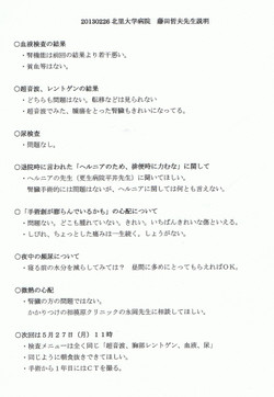 Ccf20130226_00000
