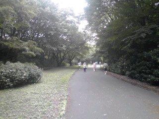 尾根緑道はこんなとこです(^O^)