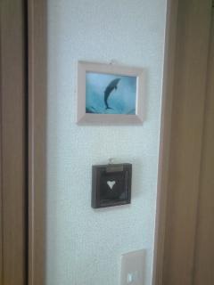 ドルフィンファンタジーの写真、飾った(^O^)