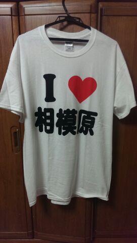 こんなTシャツ、買ってしまいました♪(/ω\*)