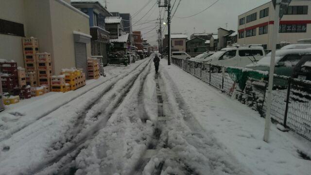 エラい雪です
